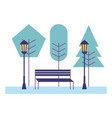 park bench trees lamp post scene vector image