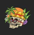 skull chill tropical holiday summer spring vector image vector image