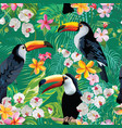 tropical flowers and toucan birds background vector image