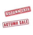 Two stamps Autumn sale textured imprint vector image vector image