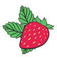 Painting Strawberry vector image