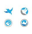 bird logo template vector image vector image