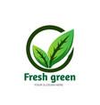 fresh green leaf logo designs care vector image