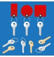 ollection of different house keys isolated on vector image vector image