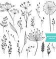 Beautiful color grass silhouette collection vector image vector image