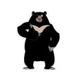 himalayan bear thumbs up and winks cheerful wild