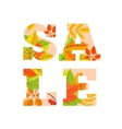 Sale word from colorful leaves vector image