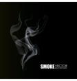 Smoke icon design vector image vector image