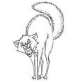 aggressive cartoon cat hisses vector image