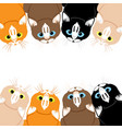 cute cats on white background vector image