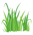 grass icon cartoon style vector image vector image