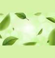 green blurred leaves with bokeh defocused lights vector image