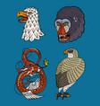 head wild animal predator eagle falcon monkey vector image