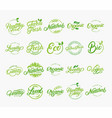set hand written lettering logos vector image vector image