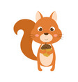 squirrel isolated on white vector image vector image