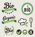 Set of organic stickers and ribbons vector image