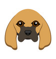 cute bloodhound dog avatar vector image vector image