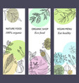 eco food banners set watercolor and hand drawn vector image vector image