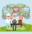 grandparents love relationship cartoon vector image