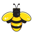 symbol honey bee isolated on white vector image vector image