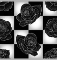 black roses on chessboard background vector image vector image