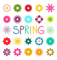 colorful spring flat flowers isolated on white vector image