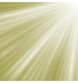 Elegant burst on a path of golden light EPS 8 vector image vector image