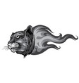 monochromatic jaguar flame tattoo vector image vector image