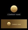 mountain gold logo vector image vector image