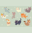 cute cartoon cats character pack vector image