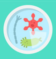 petri dish of bacteria flat icon medicine vector image