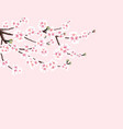 sakura cherry branch with white flowers isolated vector image vector image
