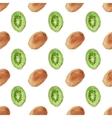 Seamless watercolor pattern with kiwi on the white vector image vector image