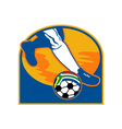 soccer player ball flag south africa vector image vector image
