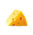triangular piece of chees with holes vector image vector image