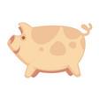 cute big pig vector image