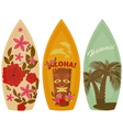 Surfboards vector image