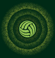 abstract green persian volleyball vector image