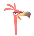 cool carton pink flamingo bird vector image vector image