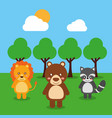 cute babies lion bear raccoon animals in the vector image
