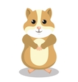 cute hamster mascot isolated icon vector image vector image