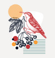 hand-sketched treecreeper perching bird vector image