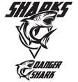 monochrome a toothy shark vector image
