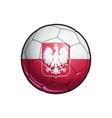 polish eagle flag football - soccer ball vector image vector image