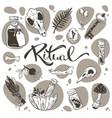 ritual halloween pagan collection magic vector image