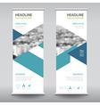 roll up business brochure flyer banner design vector image vector image