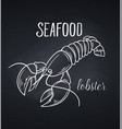 hand drawn lobster icon vector image vector image