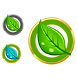 leaf emblems vector image