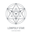 Polygonal Star Modern stylish logo Design element vector image