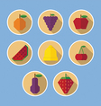 Set of fruit flat icons with long shadows vector image